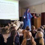 Biblical sheep assembly in Bramley
